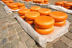 gouda cheese wheels at a Netherlands market