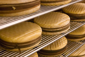 livarot cheeses in a Normandy cheese factory
